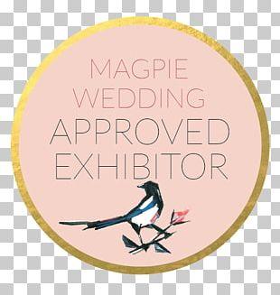 Wedding Invitation Bride Wedding Dress Wedding Photography PNG
