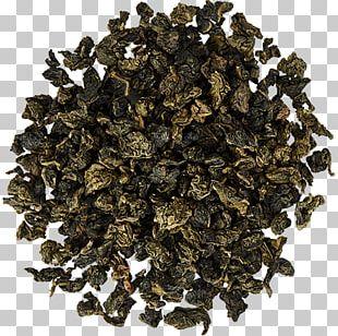 Biluochun Oolong Green Tea Nilgiri Tea PNG