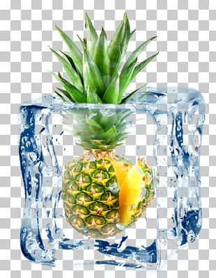 Cocktail Juice Fruit Ice Cube PNG