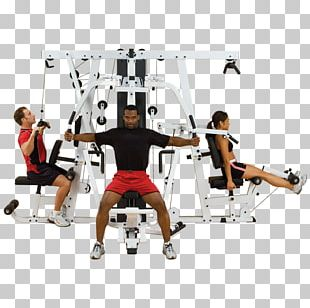 Exercise Equipment Fitness Centre Bench Physical Exercise PNG