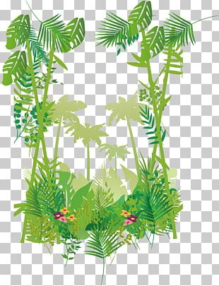 Forest Border PNG