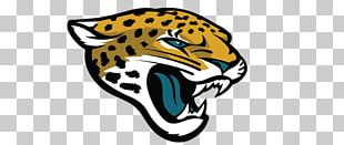 Jacksonville Jaguars EverBank Field New York Jets New England Patriots 2013 NFL Season PNG