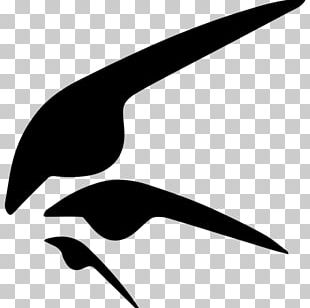 Beak Water Bird Silhouette PNG