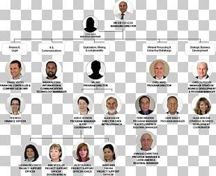 Organizational Chart Organizational Structure Board Of Directors BHP Billiton Ltd. PNG