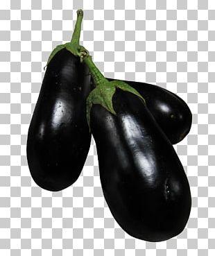 Eggplant Dolma Vegetable PNG