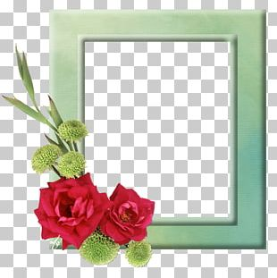 Portable Network Graphics Flower Rose PNG