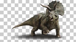 Le Guide De Survie Jurassic World Chaos Island: The Lost World Dinosaur Triceratops Jurassic Park PNG