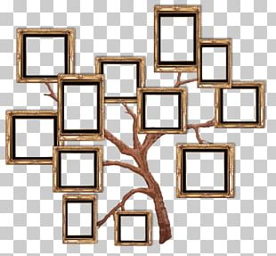 Frame Film Frame PNG
