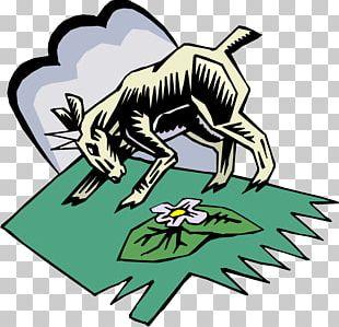 Boer Goat Sheep Goats PNG
