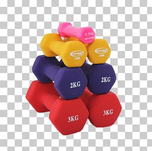 Dumbbell Barbell Exercise Equipment Weight Training Physical Exercise PNG