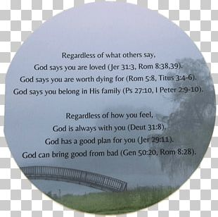 Chapters And Verses Of The Bible Greeting & Note Cards Religious Text PNG