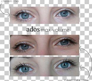 Eyelash Extensions Eye Shadow Eye Liner Mascara Lip Liner PNG