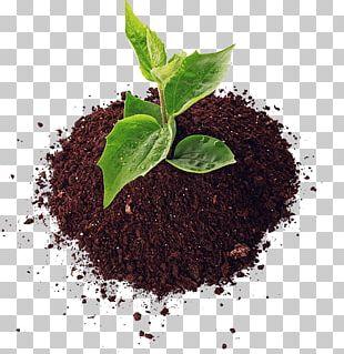 Soil Agriculture Fertilisers Pesticide Organic Farming PNG