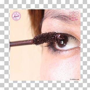 Eyelash Extensions Eye Shadow Mascara Cosmetics PNG