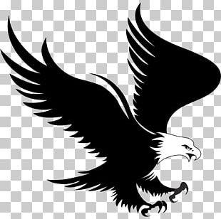 Bald Eagle Logo PNG