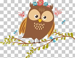 Barn Owl Bird PNG