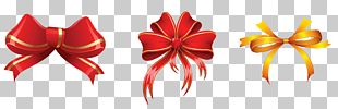 Christmas Decoration Ornament PNG