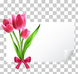 Greeting Card Wedding Invitation YouTube E-card PNG