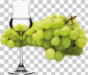 Grape Pisco Sour Wine Glass PNG