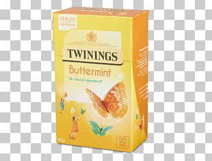 Green Tea White Tea Twinings Tea Bag PNG