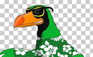 Duck Green IPod Nano Bird PNG