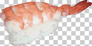 Japanese Cuisine Sushi Sashimi Raw Foodism PNG