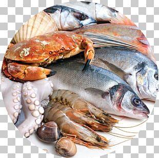 Seafood Fishcakes Paella PNG