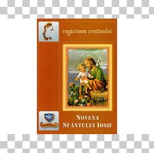 Catholic Bible Text Saint Frames PNG