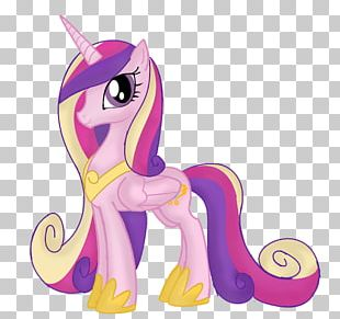 Princess Cadance Pony Twilight Sparkle Princess Celestia Rainbow Dash PNG
