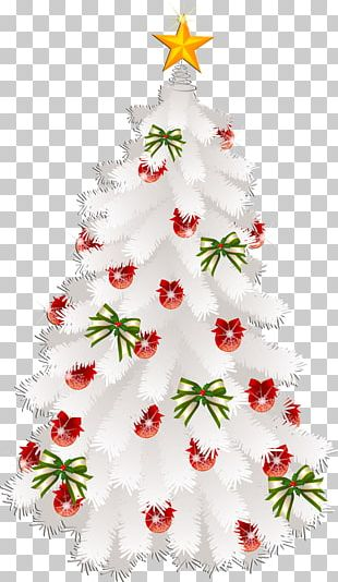 Christmas Card Greeting & Note Cards Wish PNG