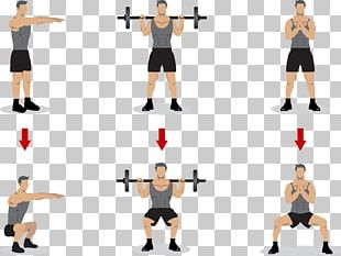 Squat Olympic Weightlifting Physical Exercise Strength Training PNG