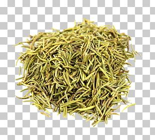 Organic Food Rosemary Spice Herb Summer Savory PNG