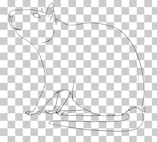 Line Art Drawing Cat PNG