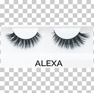 Eyelash Extensions Cosmetics Cruelty-free Eyelash Curlers PNG