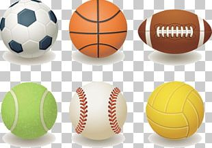 Ball Sport Cartoon PNG
