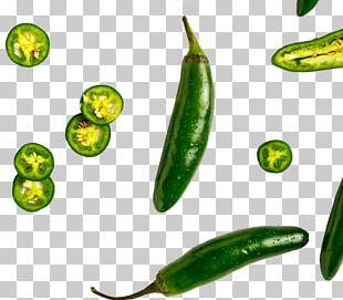 Serrano Pepper Jalapeño Pico De Gallo Mexican Cuisine Salsa PNG