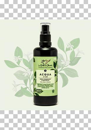 Kiev Lotion Argan Oil Cosmetics Skin PNG