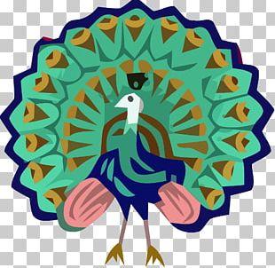 Burma Green Peafowl Bird Asiatic Peafowl PNG