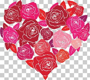 Rose Heart Love Stock Photography PNG