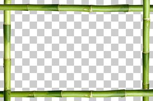 Frames Lucky Bamboo Stock Photography Decorative Arts PNG