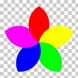 Flower Petal PNG