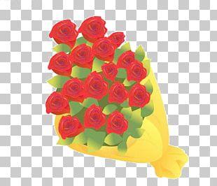 Garden Roses Beach Rose Flower PNG