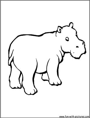 Hippopotamus Coloring Book Cuteness Hungry Hungry Hippos Child PNG