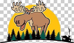 Bullwinkle J. Moose Deer Drawing PNG