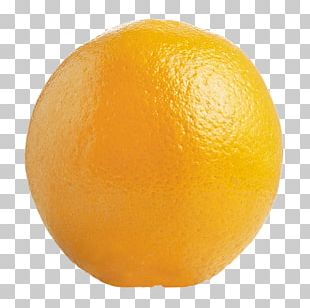 Tangelo Stock Photography Fruit PNG