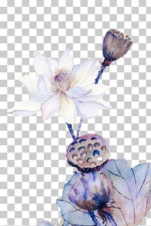 Nelumbo Nucifera Ink Wash Painting Chinese Painting PNG