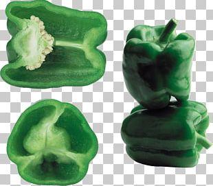 Chili Pepper Bell Pepper PNG