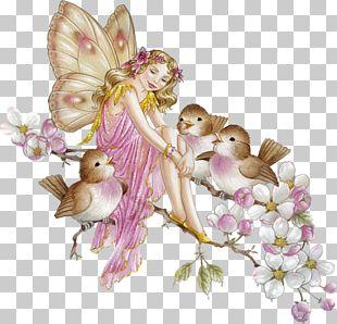 Fairy Flower Fairies PNG