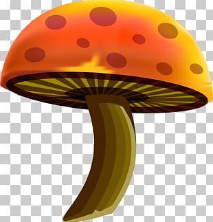Cartoon Drawing Mushroom PNG