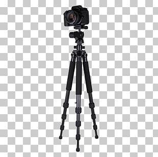 Tripod Video Camera Ball Head PNG